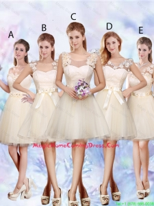Modest A Line Appliques and Belt Homecoming Dresses in Champagne