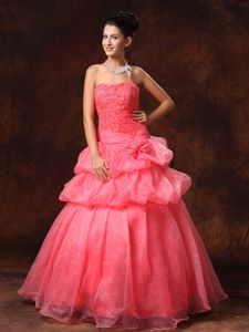 Watermelon Strapless Princess Appliqued Homecoming Dress for Junior with Pick-ups