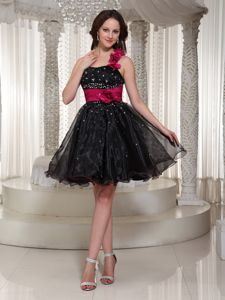 Black and Fuchsia One Shoulder Short Puffy Homecoming Dress in New Mexico