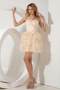 Champagne Straps Short Mini-length Tight Homecoming Dresses in Organza from Aspen