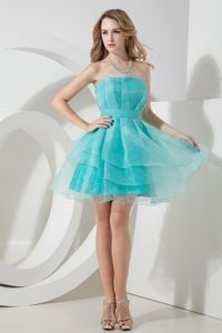 Ruched Light Blue A-line Strapless Homecoming Dresses in Mini-length Organza in Fargo
