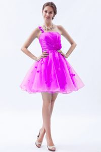 One Shoulder Mini-length Organza Vintage Homecoming Dresses with Appliques in Denton