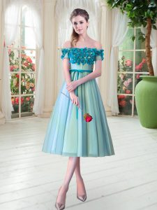 Tulle Off The Shoulder Sleeveless Lace Up Appliques Homecoming Dress Online in Aqua Blue