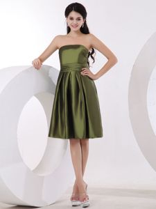 Special Olive Green Strapless Inexpensive Homecoming Dresses in Carmel