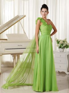 Spring Green Ruched Long Chiffon Celebrity Homecoming Dress in Honolulu