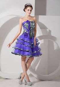 New Purple Lace-up Organza Inexpensive Homecoming Dresses in Wheaton