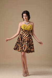 Sweetheart Beaded Leopard A-line Junior Homecoming Dresses in Addison