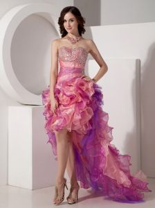 Column Sweetheart Organza Homecoming Dance Dresses with High-low in Alamo