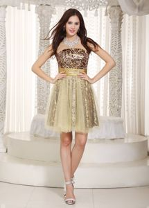 Champagne Strapless Leopard and Tulle Sparkly Homecoming Dresses in Douglas