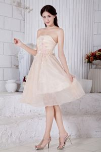 Champagne Strapless Homecoming Dresses for Juniors with Appliques in Buckeye