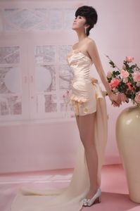 Champagne Strapless Homecoming Queen Dress with Watteau Train and Flowers