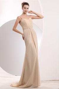 Pretty Ruched Champagne Homecoming Dress with Brush Train in Logan