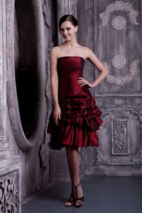 Pick-ups Burgundy A-line Strapless Homecoming Dress in Massing Germany