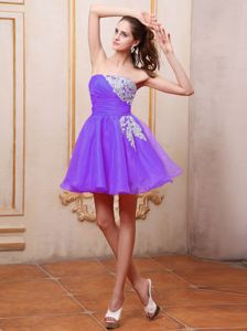 Newmarket Ontario Strapless Appliques Purple Homecoming Dresses