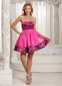 Zebra Sash Sweetheart Hot Pink Homecoming Dress in Pickering Ontario