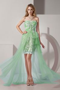 Appliqued Light Green Strapless High-low Evening Homecoming Dress in Milo