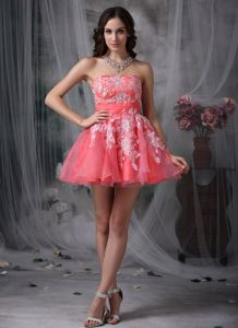 Peach Mini-Length Strapless Appliqued Homecoming Dance Dress in Alaska