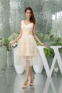 A-line V-neck Short Champagne Vintage Homecoming Dresses in Tulle from Craig