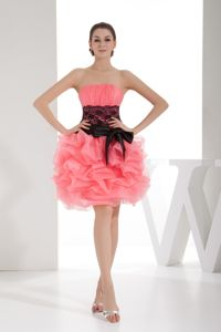 Lace and Pick Ups Strapless Short Homecoming Dresses in Watermelon in Ellington