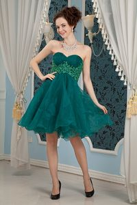 Dark Green A-line Sweetheart Mini-length Organza Homecoming Dresses in Appliques in Craig
