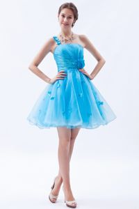 Baby Blue A-line One Shoulder Appliqued Cute Homecoming Dresses in Alford