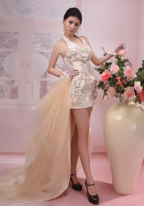 Halter Watteau Hand Flowery Champagne Homecoming Dresses in Falkland