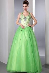 Spring Green Beaded Halter top Organza Homecoming Queen Dress in Carmel