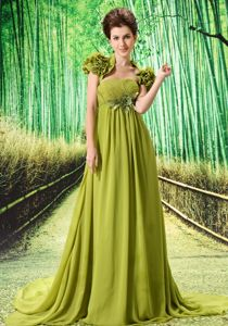 Discount Olive Green Chiffon Evening Homecoming Dresses Court Train