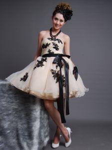 Pretty Organza Appliqued Champagne Homecoming Dress with Sash
